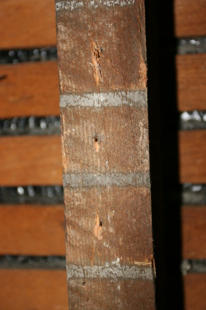 I like the stripes that the plaster left behind on the studs.