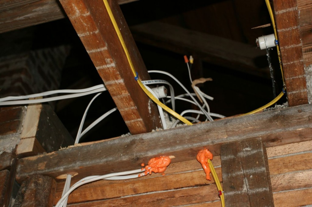 I think there are more wires now. They might be breeding.