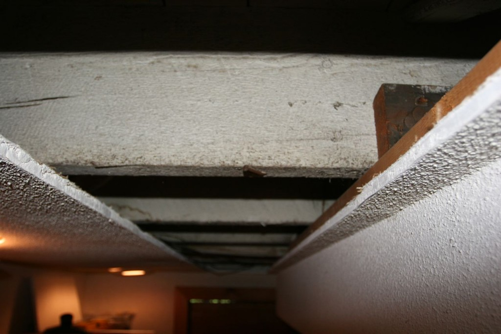 The joists run parallel with the main ridge of the house, which is the opposite of how most houses are built. I think.
