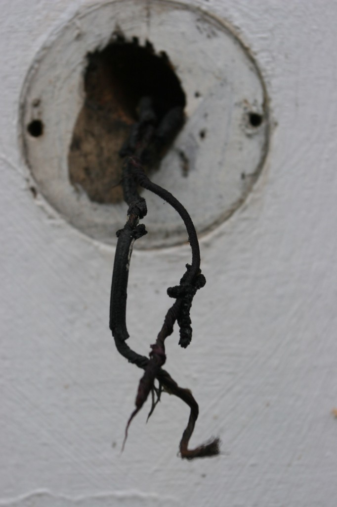 Crusty old doorbell wires. So scary and pretty at the same time.