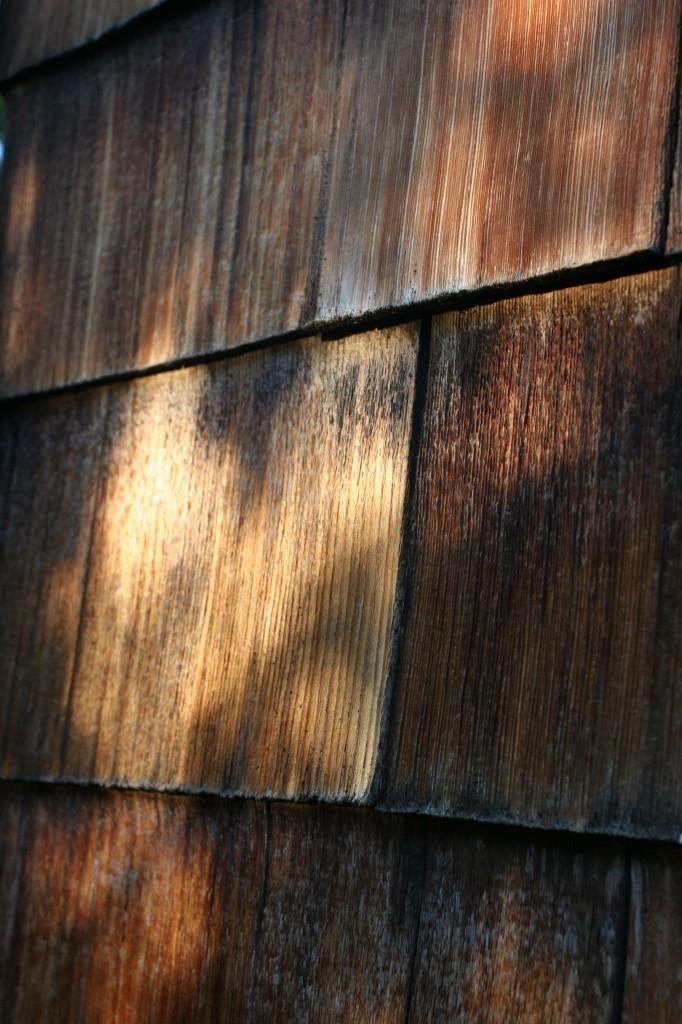 Dappled sunlight on the naturally aged shingles. Ahhh, sunlight.