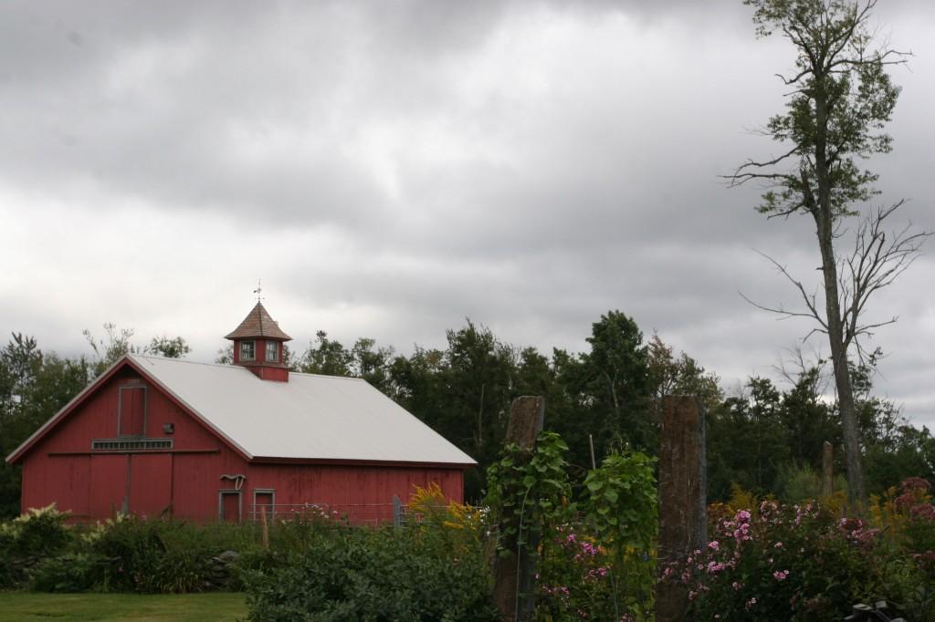 Ashfield. Stormy, lovely, rustic, rural. Ashfield.
