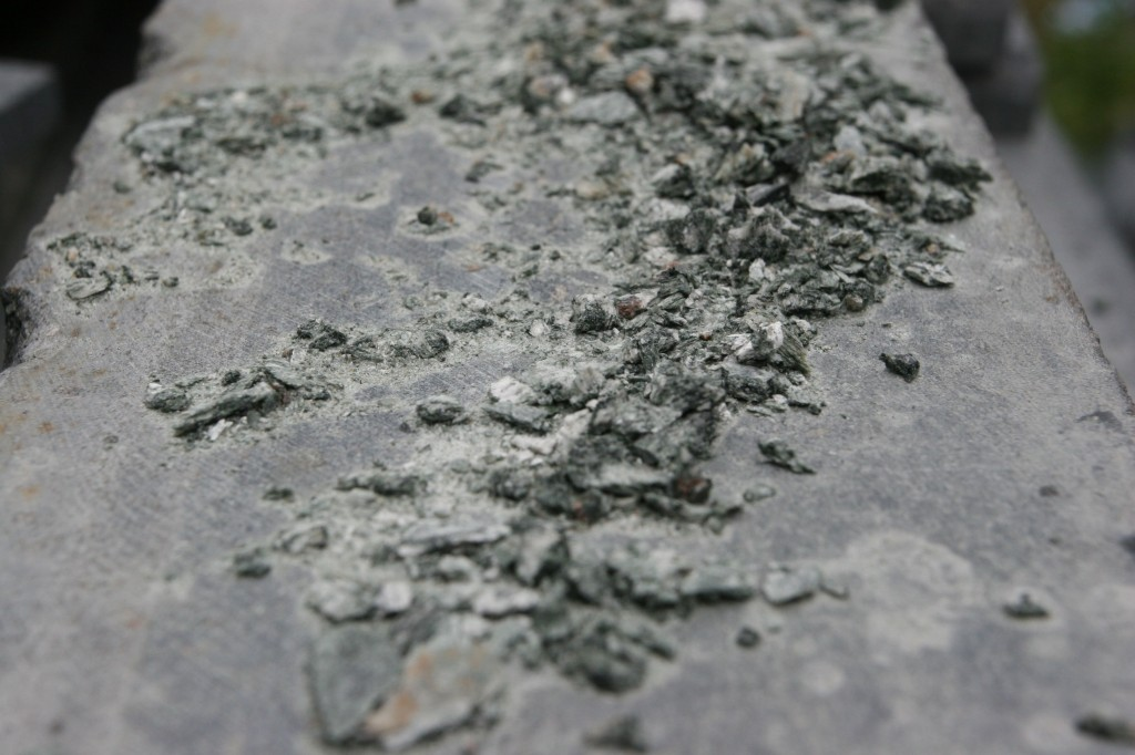 Stone dust from where Brandon was working when we arrived.