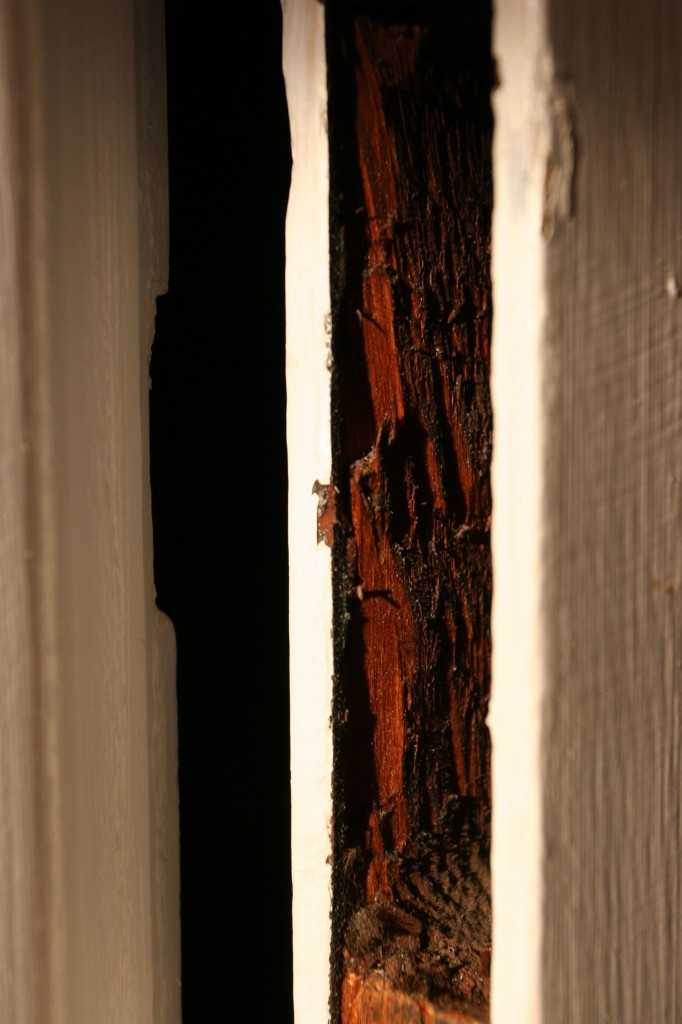 Beauty shot: door innards in the late afternoon sun.