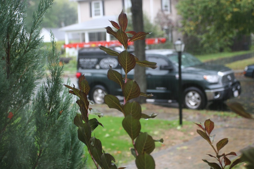 Beauty shot: Osgood Electric truck behind the rain-soaked shrubbery.