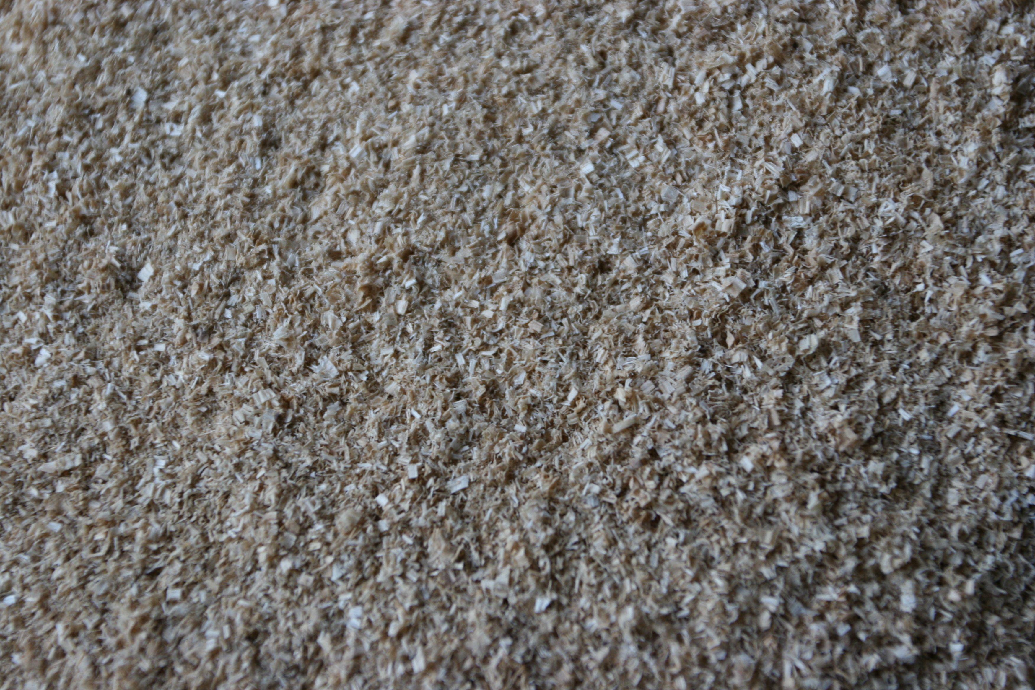 Beauty shot: sawdust. More like wooden stardust. It's so beautiful.