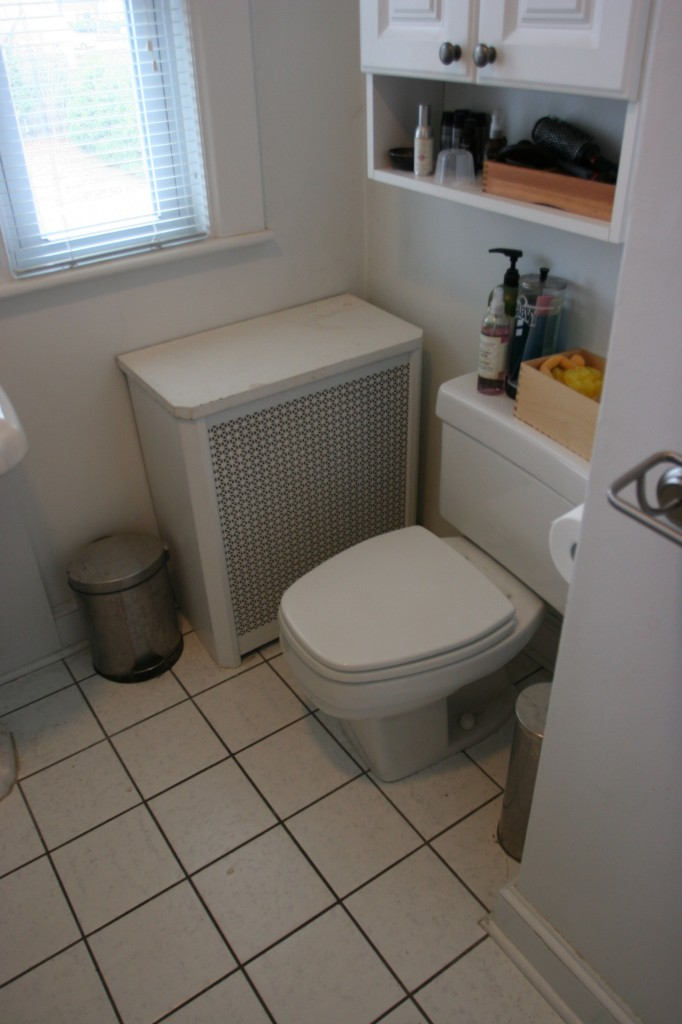 Weird, clunky toilet with squared off seat (which is impossible to replace!)... say your good-byes.
