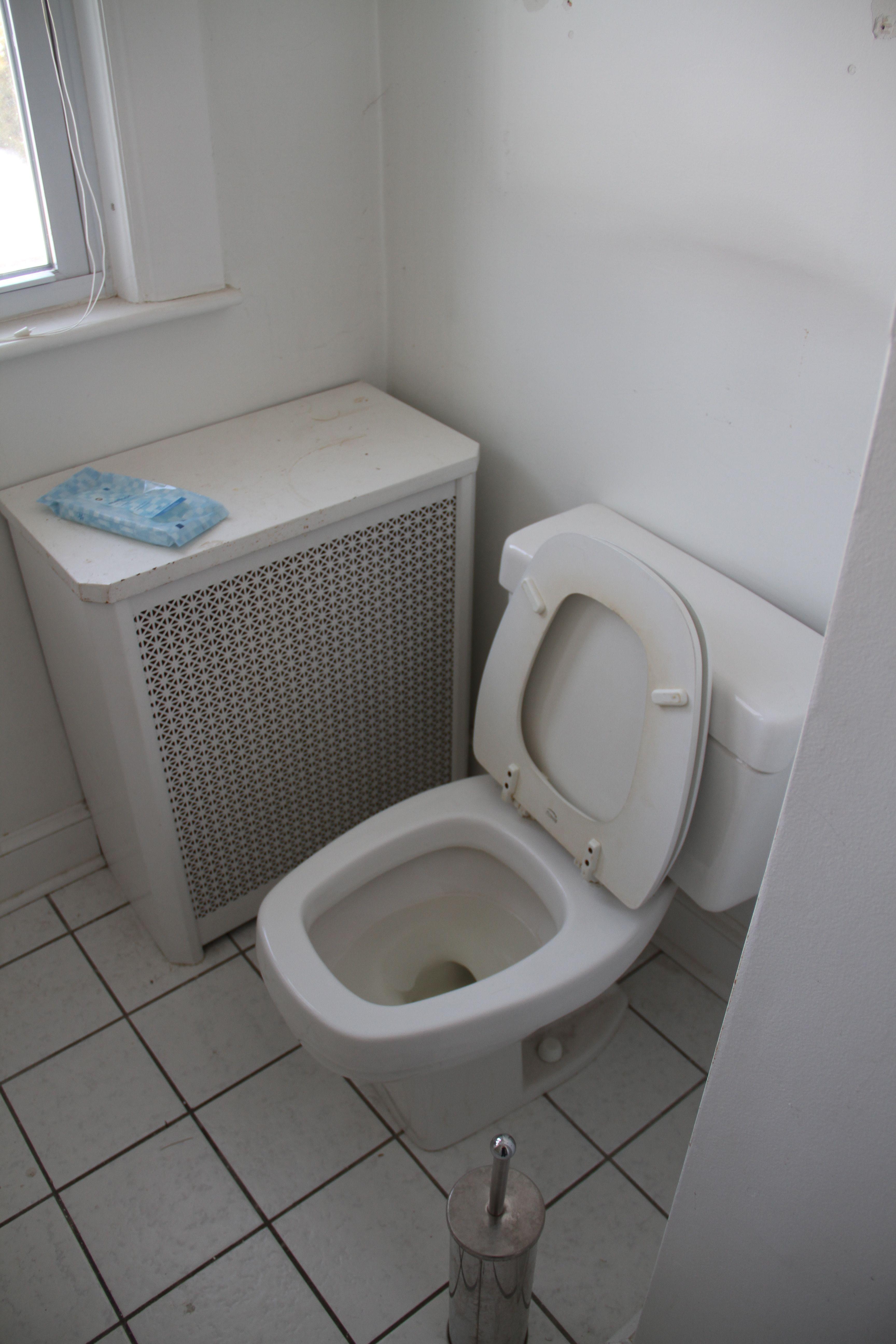 Good-bye, gross, inefficient, broken-ish toilet.