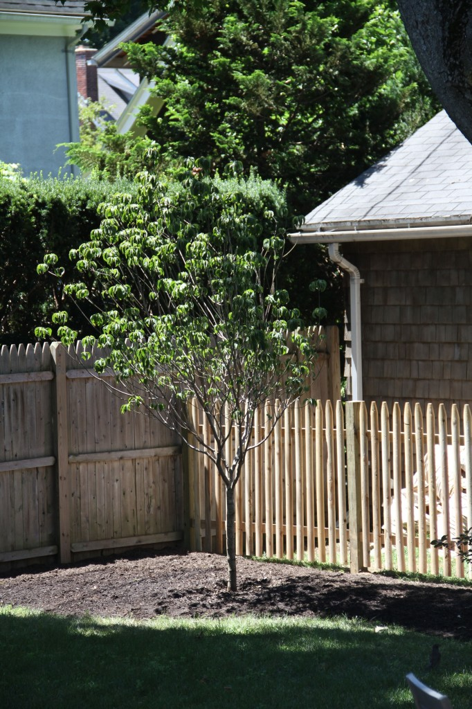 The fence really helps to set it apart from the piles of composting ingredients.