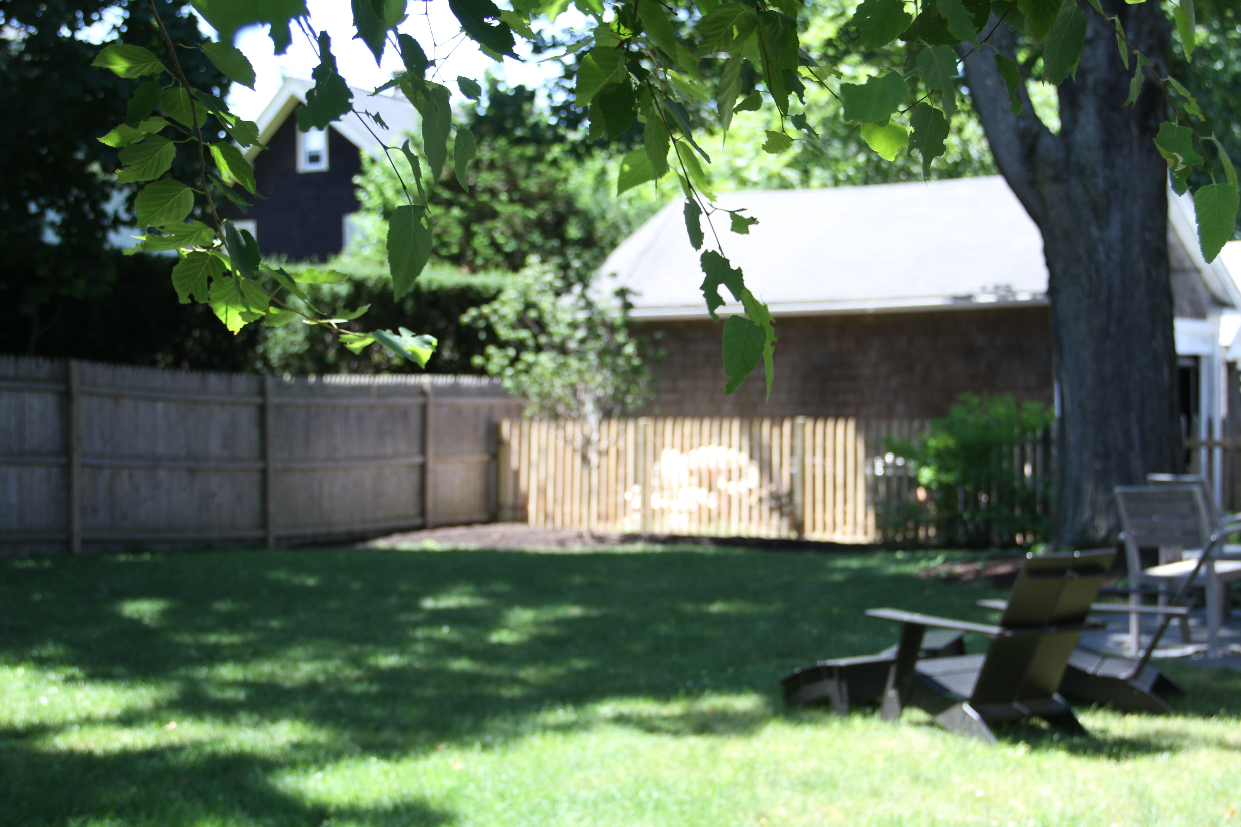We're considering staining the fence white to match the house trim, and to help the bark of the tree stand out a bit better.