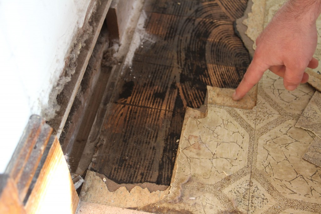Day 1: investigating the flooring. Just how many layers will there be?