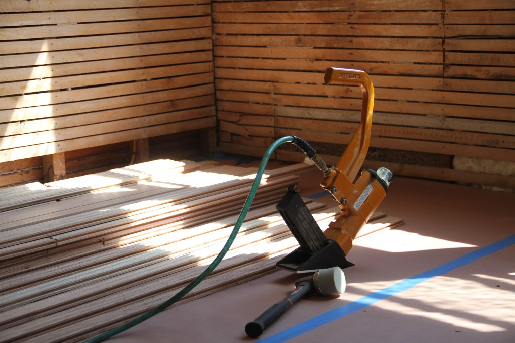 Flooring and nailer and lovely morning light.