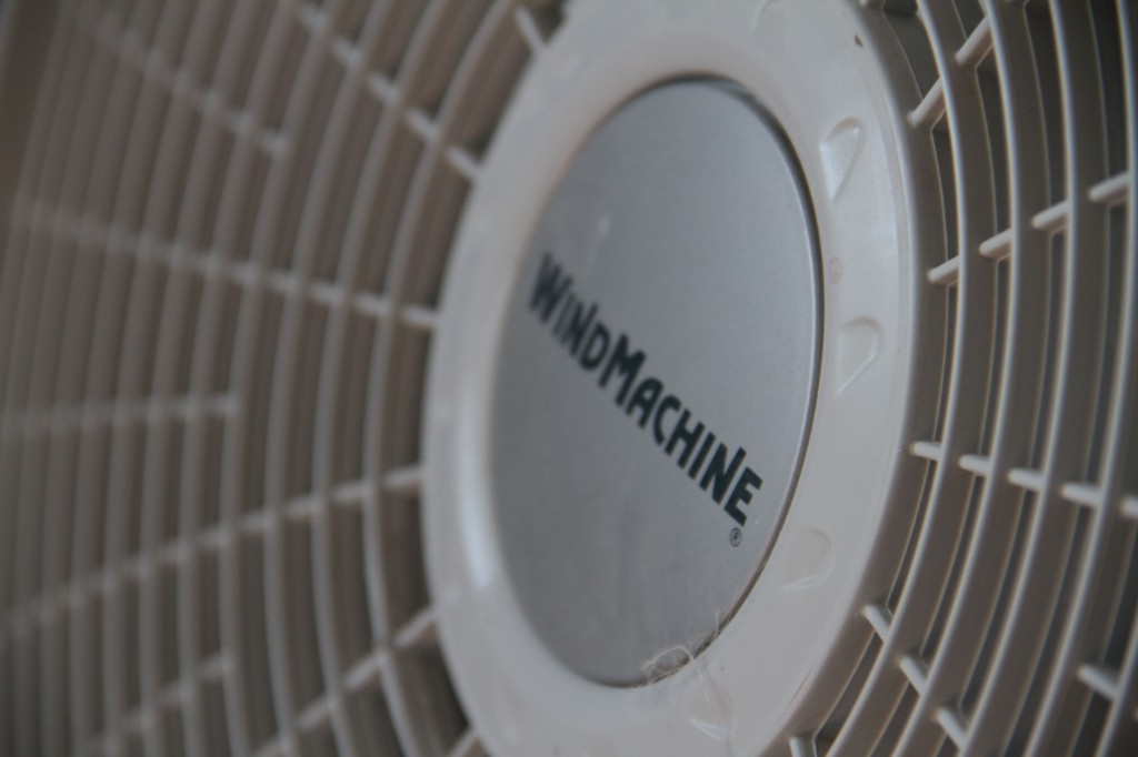 Fans, useful for speeding up off-gassing, and for keeping evenly heated air moving across the floors.