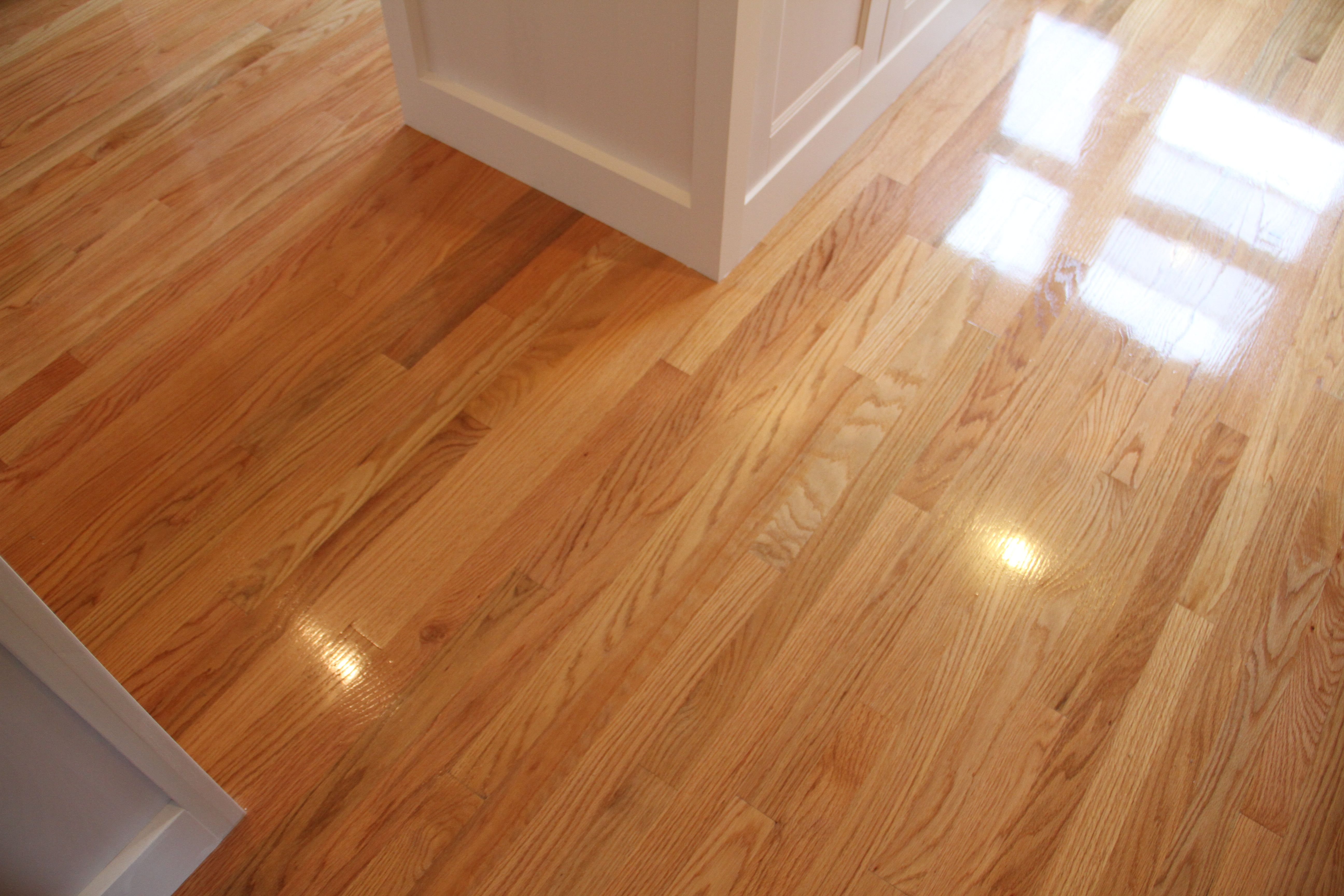And the floors. Who could forget the floors? Glorious, shiny, and not completely cured. I have some work to do before the plumbers come, I can tell you that.