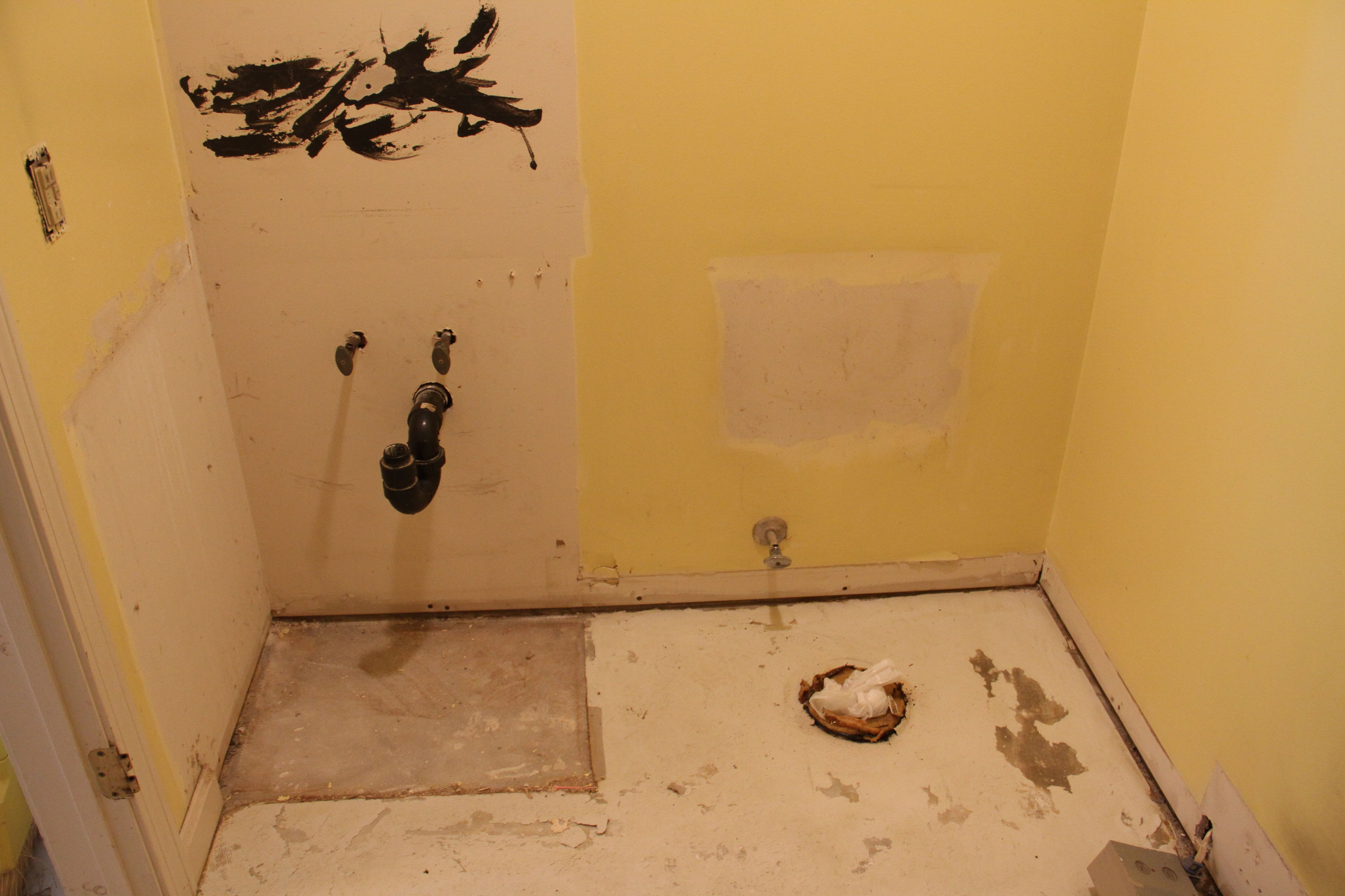 Jeff removed the vanity and toilet. And flooring. And mirror. And baseboards.