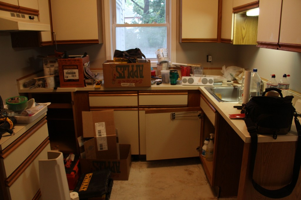 The state of the kitchen, with only one undercabinet light source. (Note the total and utter CHAOS that is everywhere!)