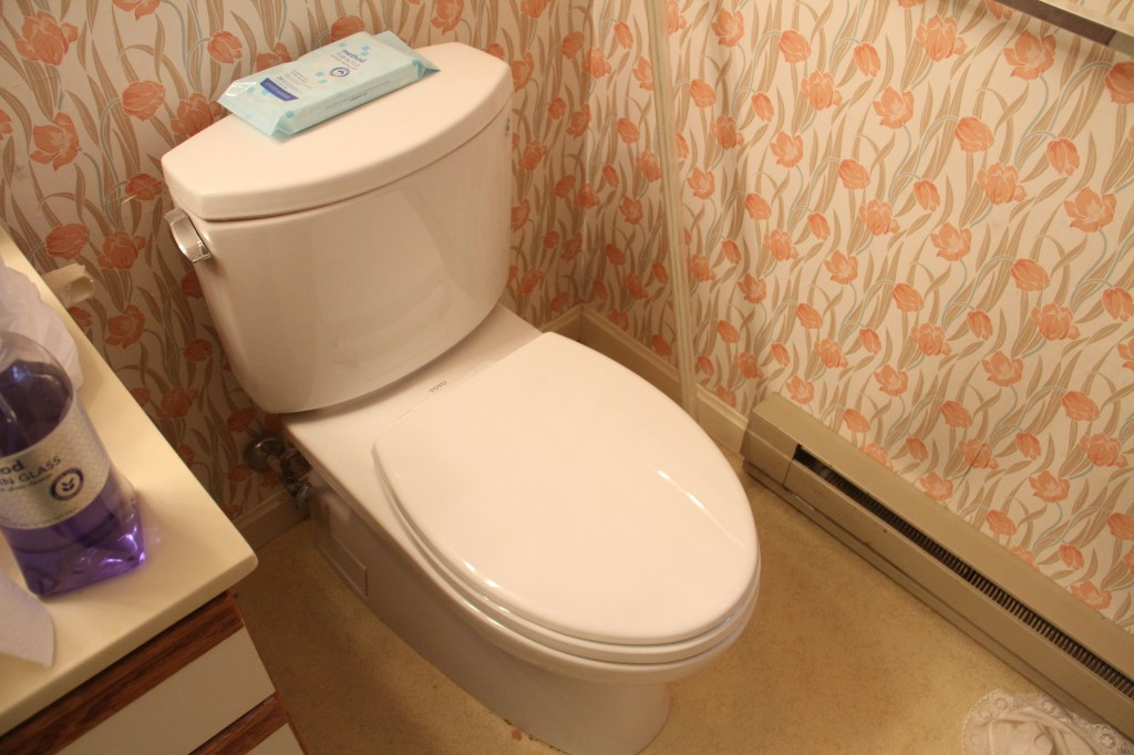 Did I ever show you pictures of the toilet that Jeff installed? Tah-dah!