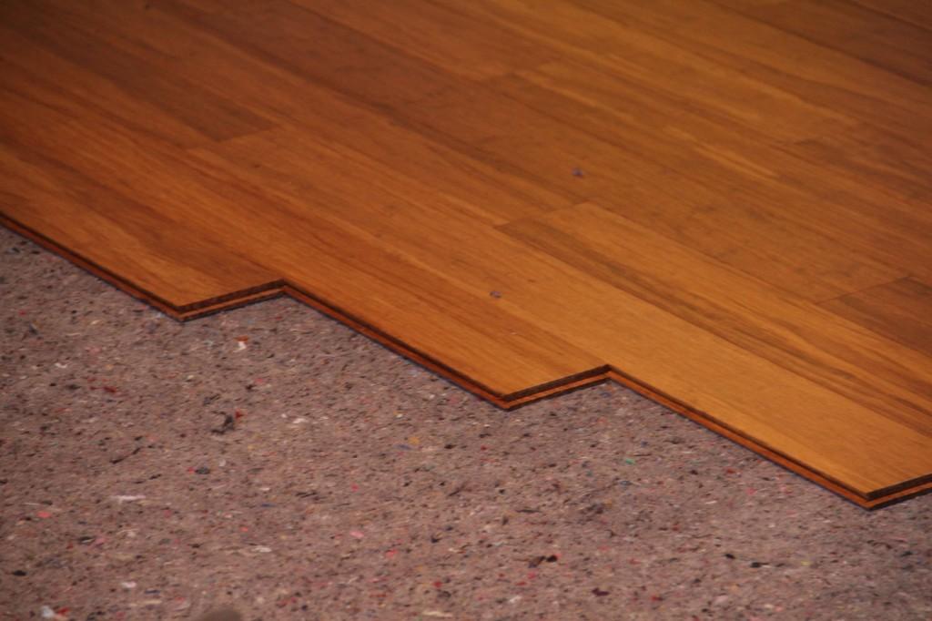 Beauty shot: bamboo flooring.