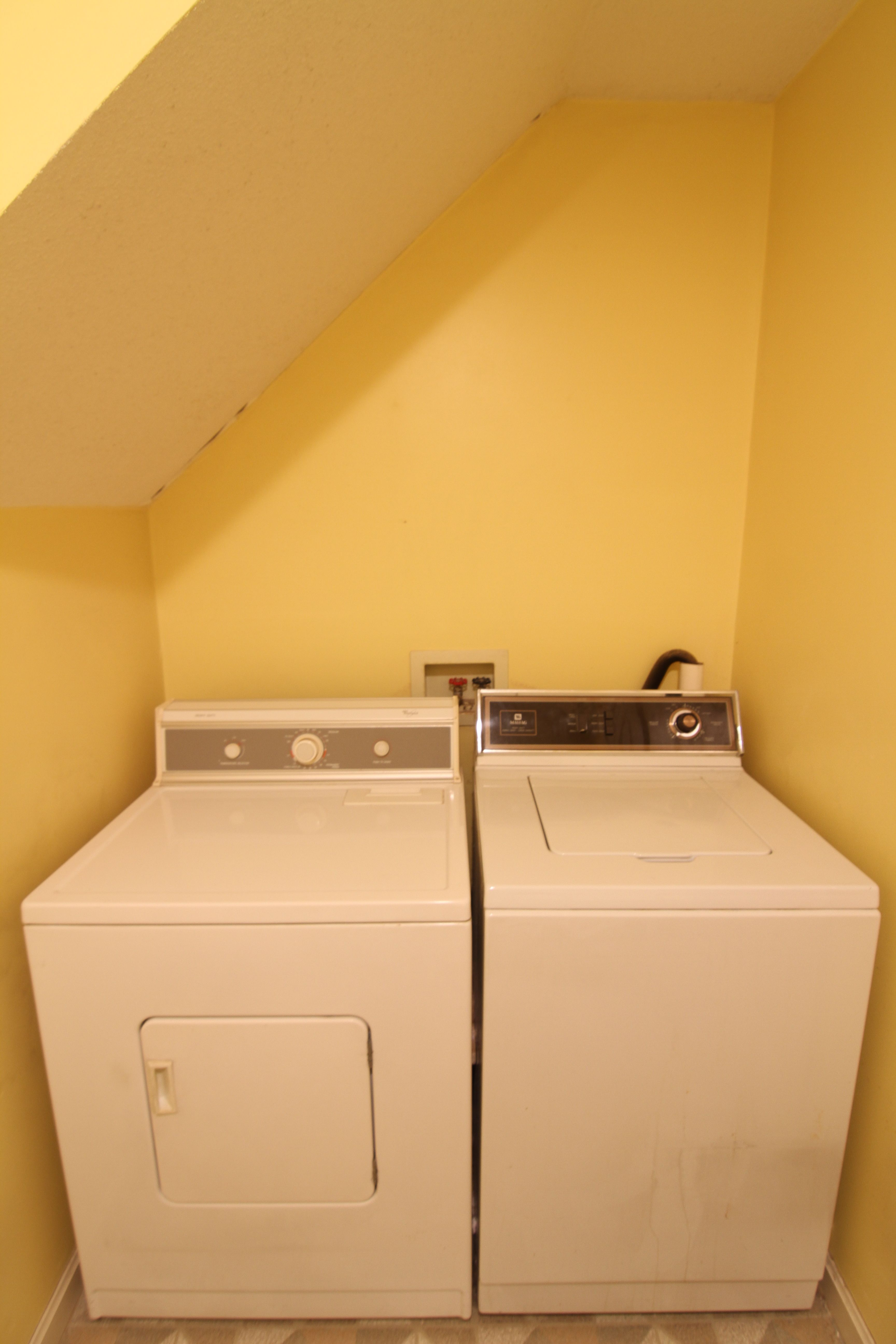 BEFORE: Laundry facilities, leak (and hidden mold) included.