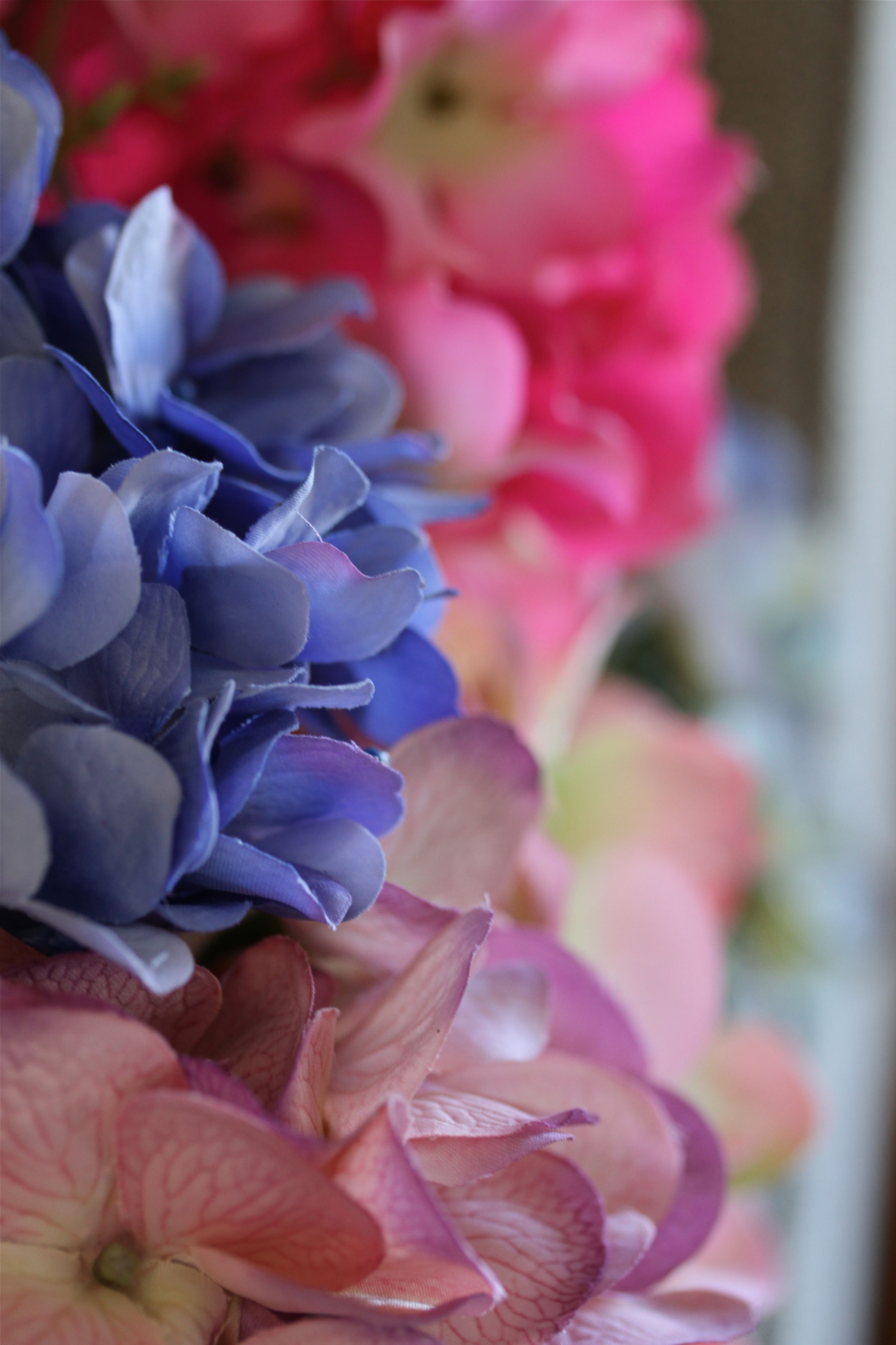Fake or not, these ruffled edges, saturated and variegated colors scream summertime to me.