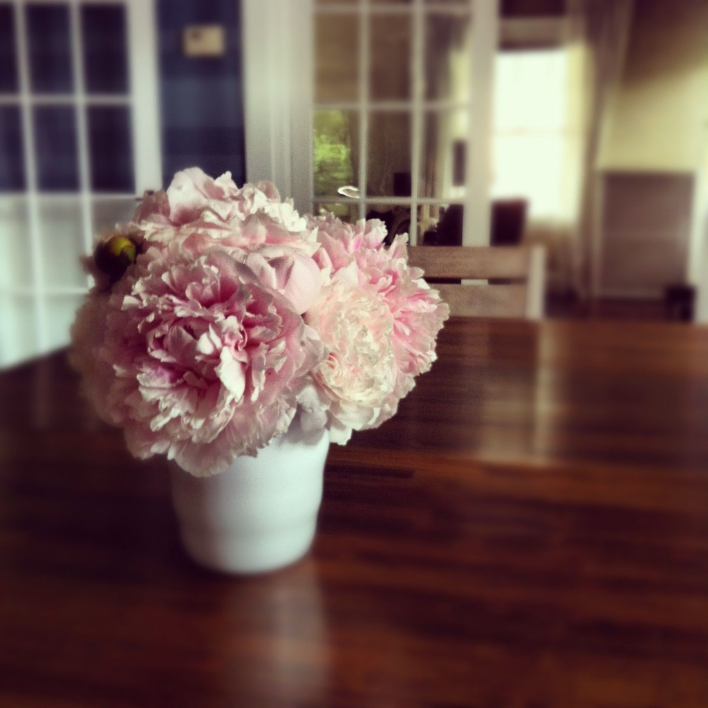 The peonies lasted less time than usual this year due to the heat and rain. Sigh. I love them most of all, scarecrow.
