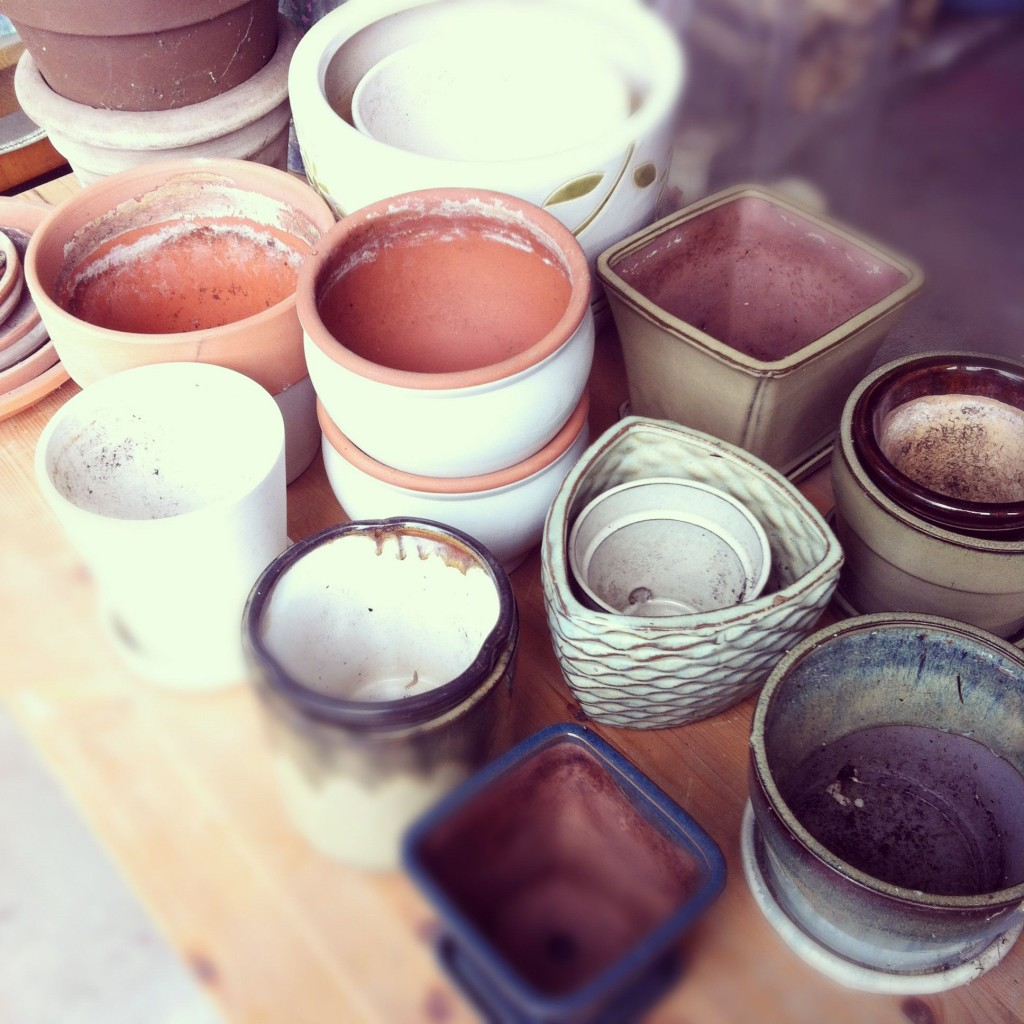 Working on cleaning out the garage I unearthed all these pots.