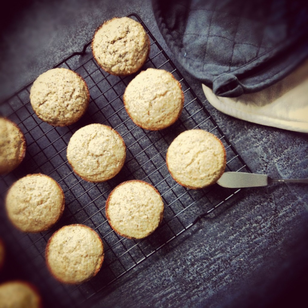 Discovering new blogs (Joy the Baker) and making the most amazing lemon-poppyseed muffins.