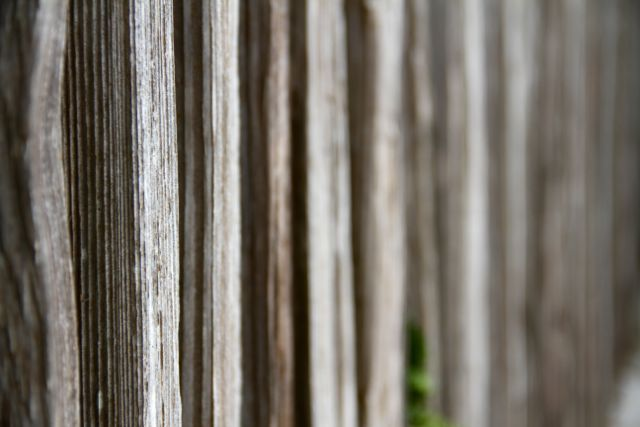 Weathered fencing provided beachy charm.