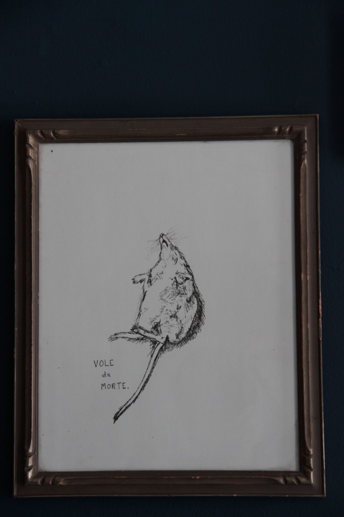 I drew this from a picture I took of a dead rodent in Massachusetts. I found the animal kind of beautiful in its gruesome end. I don't think it's actually a vole, but the pun was too funny not to include. Vintage frame.