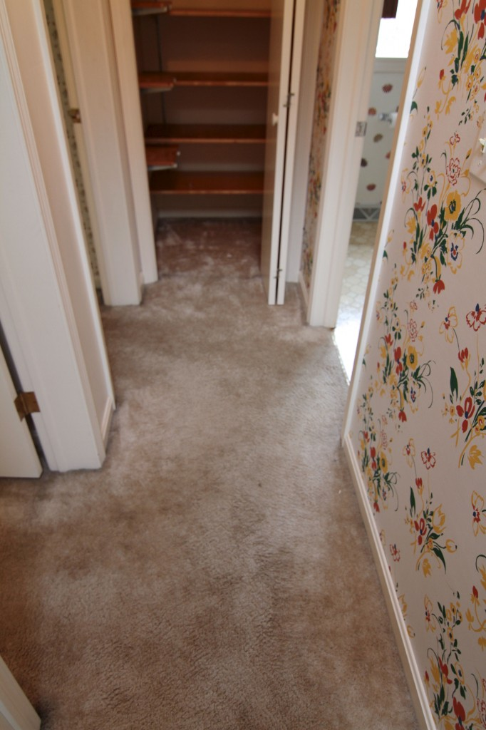 BEFORE: Carpet, wallpaper, old, gross.